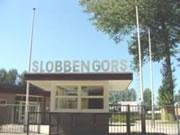 Slobbengors