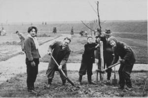 Boomplantdag Slobbengors 1959