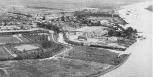 Slobbengors omstreeks 1960