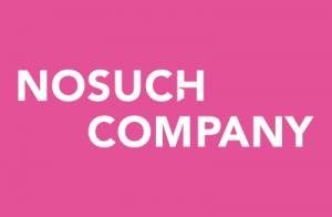 Logo NoSuchCompany SmalB